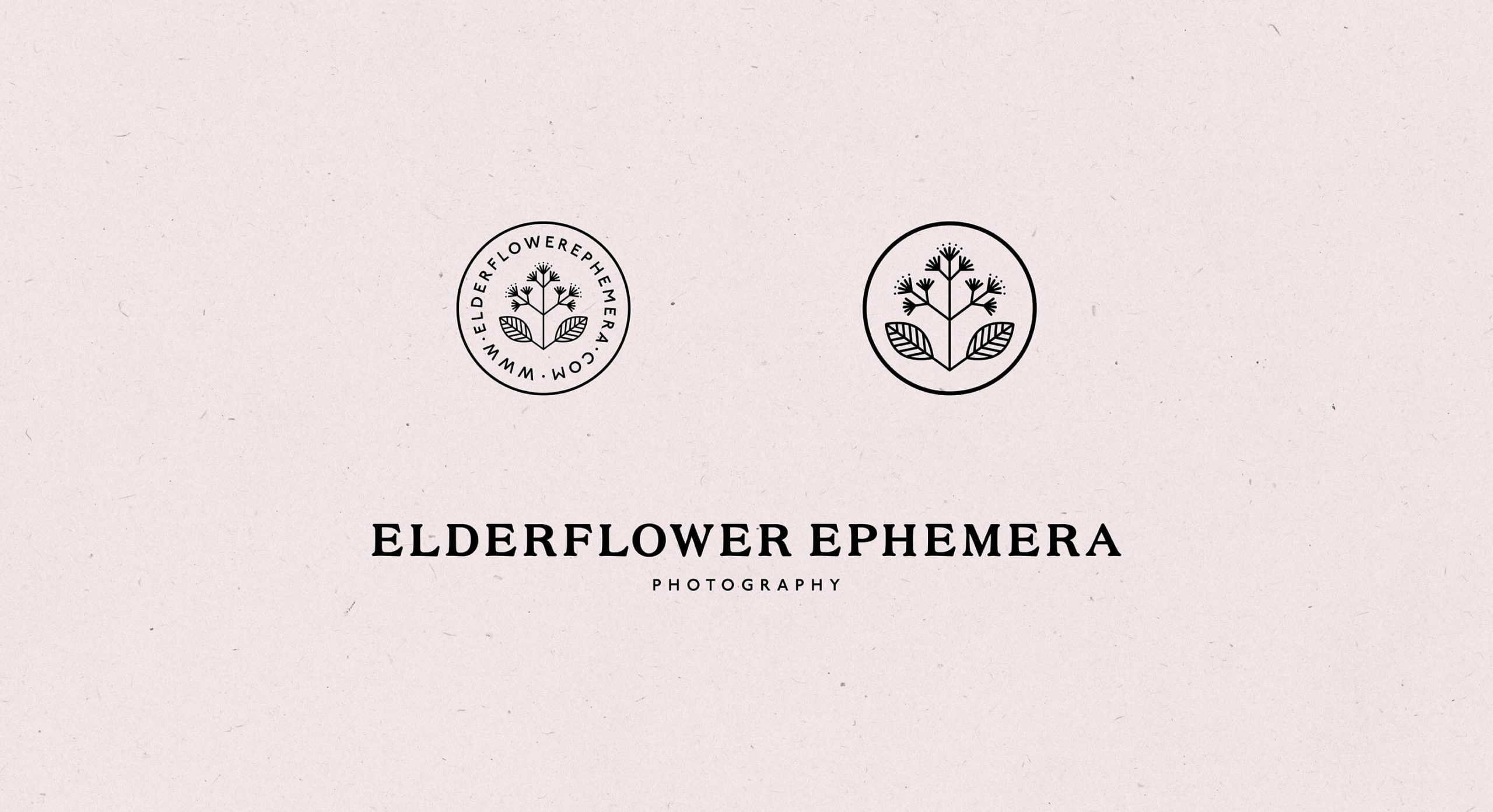 Obscurio & Co brand identity design for film photographer elderflower ephemera
