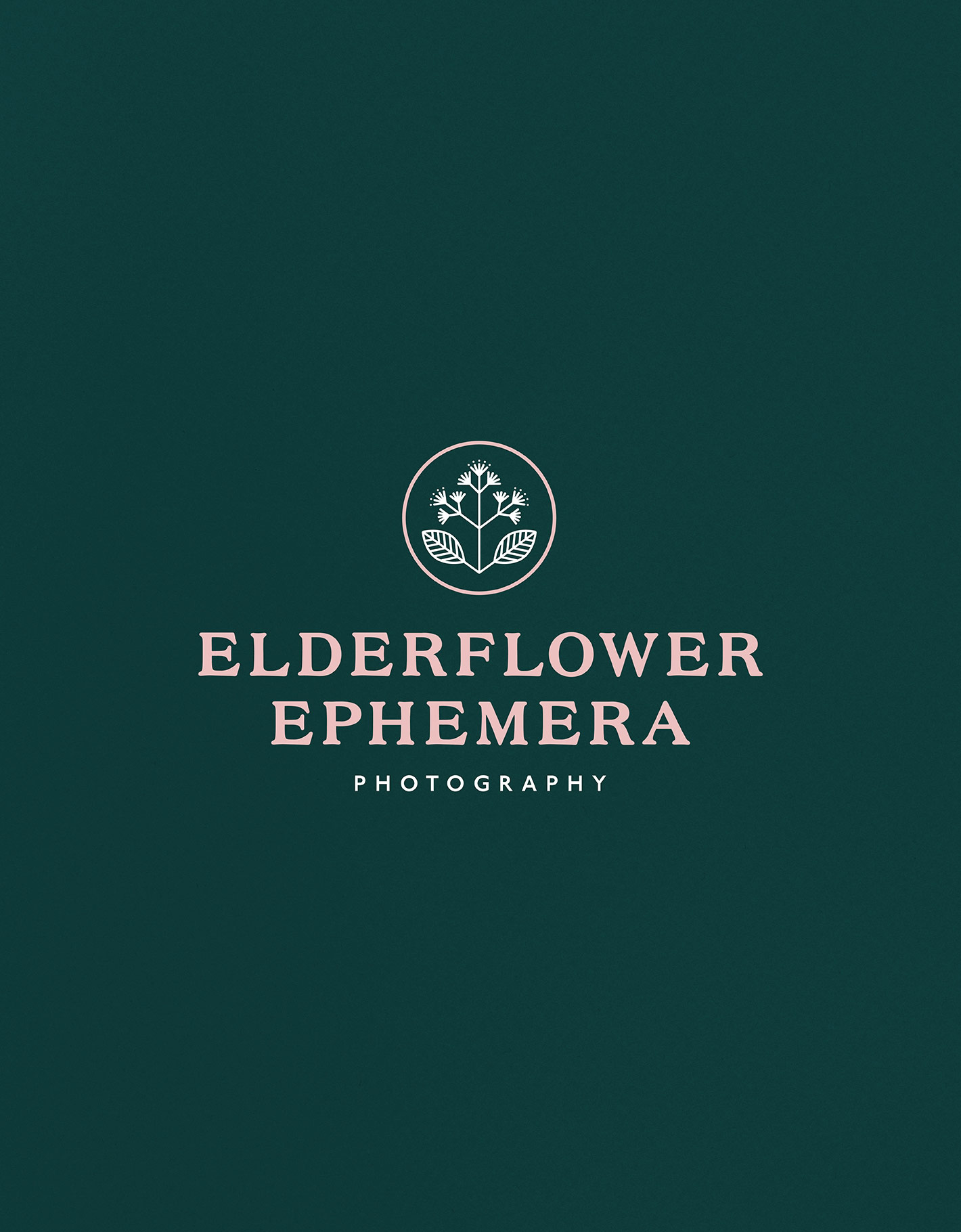 Floral icon and serif logotype for elderflower ephemera