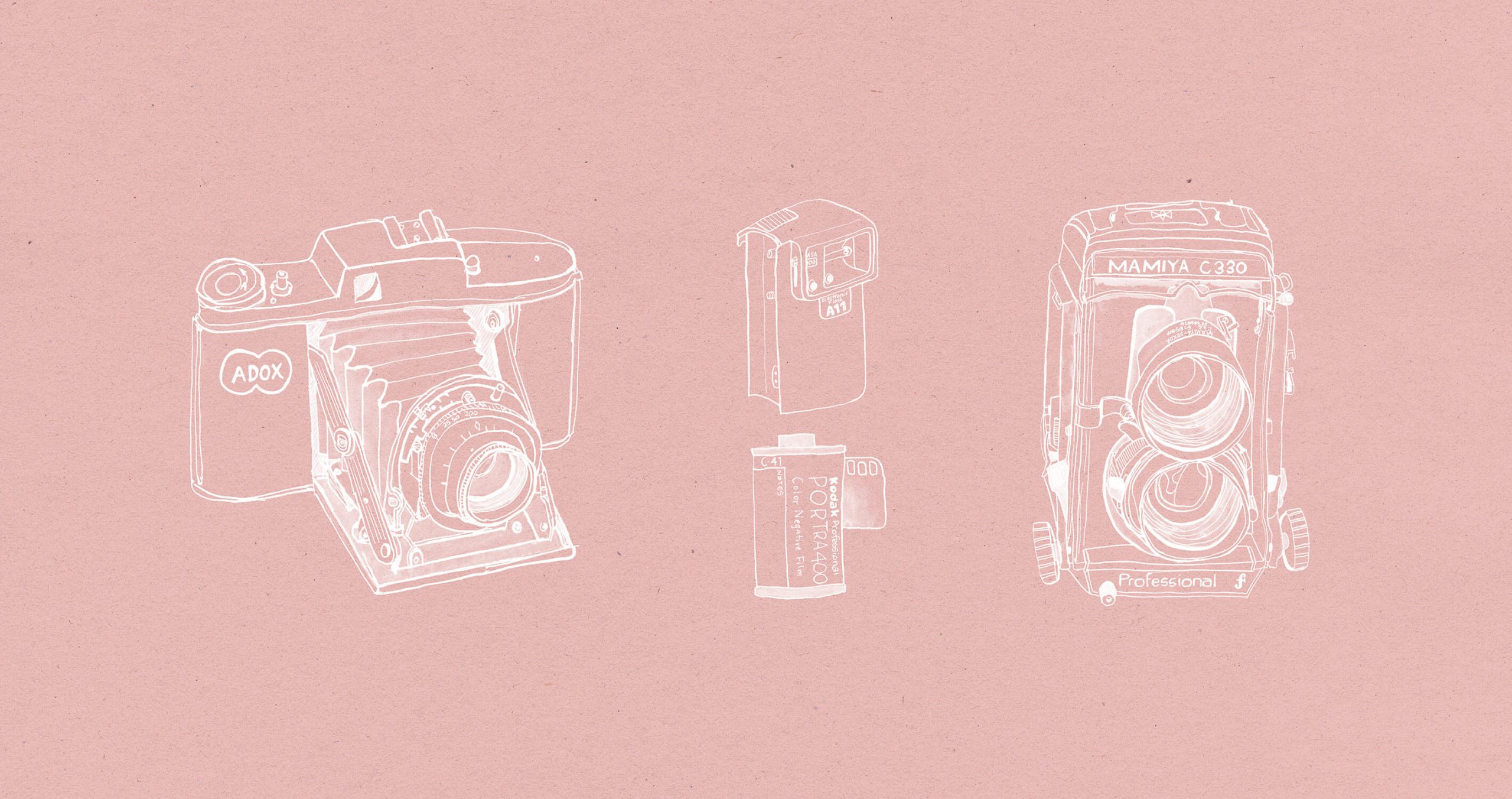 Client illustrations by elderflower ephemera of vintage cameras and film