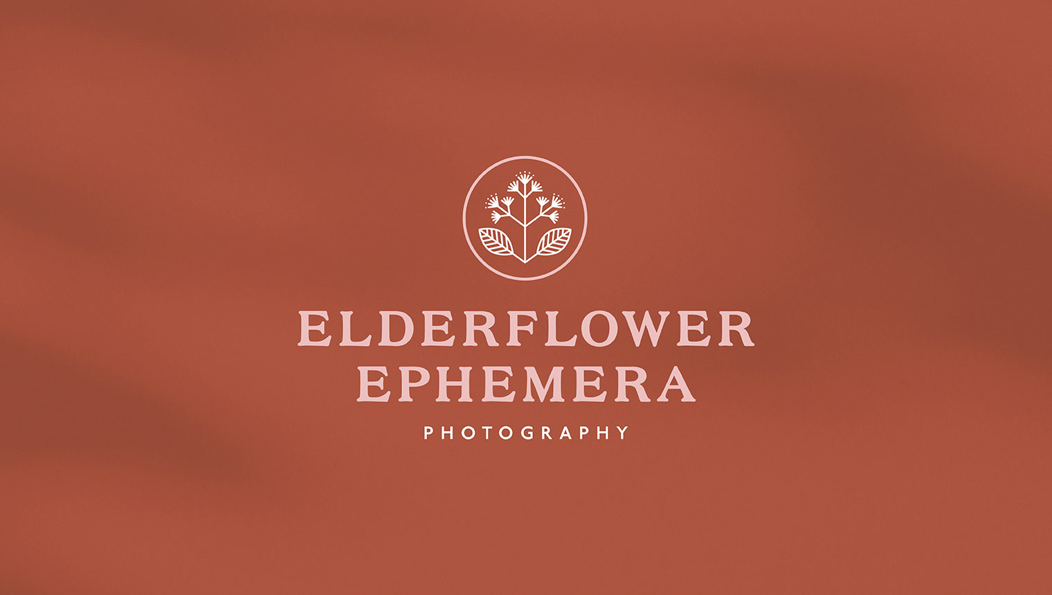 Vintage inspired logotype featuring floral emblem for film photographer elderflower ephemera