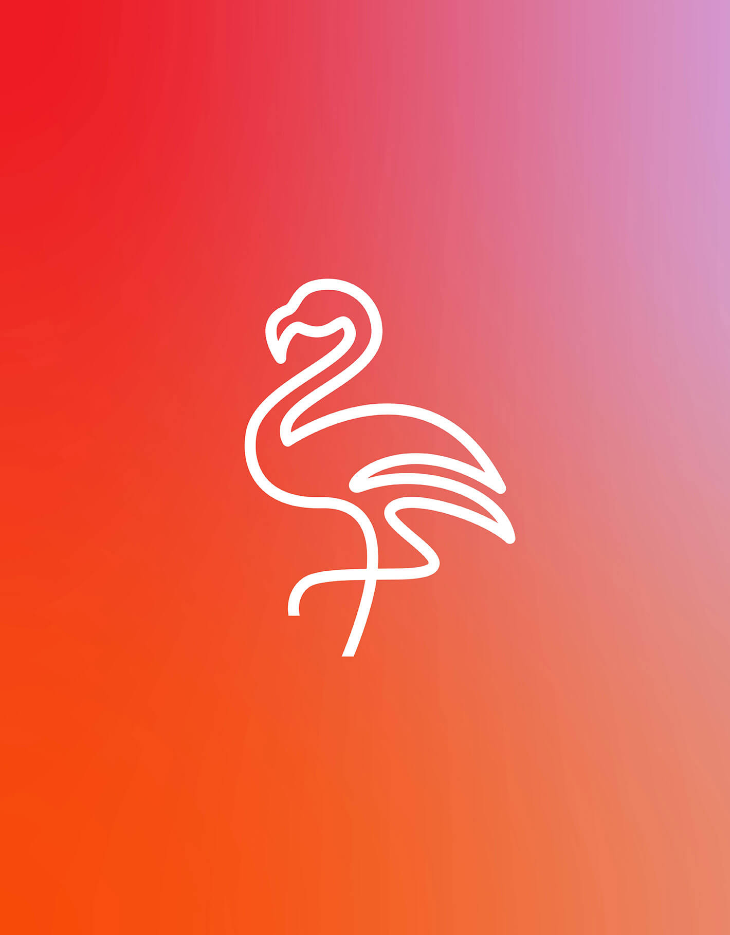 Tropical coloured background gradient with white Wicker darling flamingo line icon