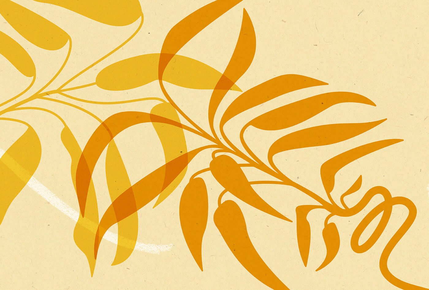 Illustration of yellow and orange lucky bamboo on cream coloured background with white textured line in background.